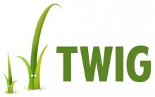 Inline Twig template